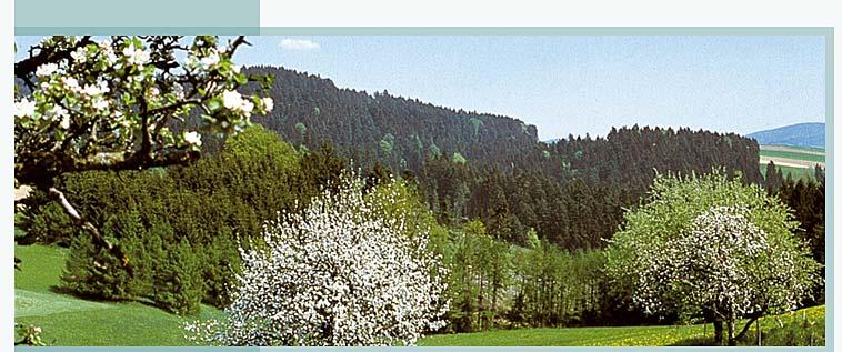 Urlaubsanfrage an Ferienwohnung Ziegler in Waldkirchen am Nationalpark Bayerischer Wald Bayern